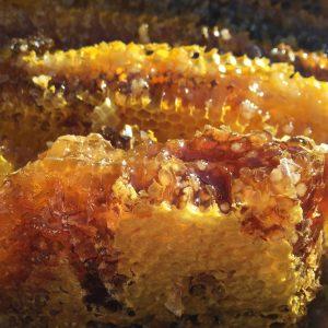 soil-honey-1534287_1920